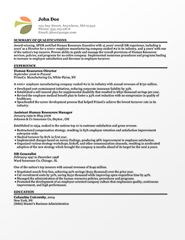 easy resume builder create resumes pongo - Resume Builder